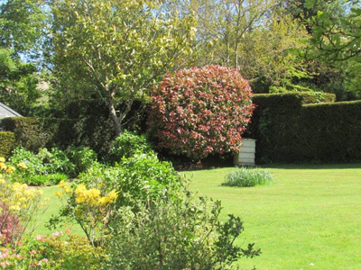 Landscaping Services in Salcombe